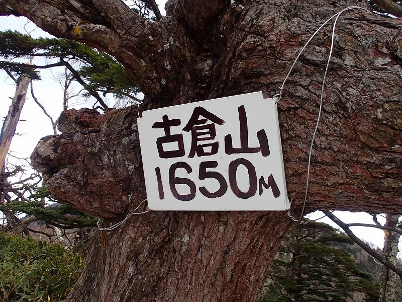 Pb120050